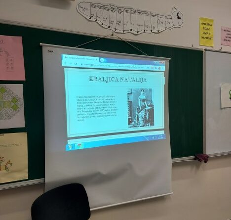 Пројектна настава Дан примирија у  Првом светском рату- Наталијина рамонда